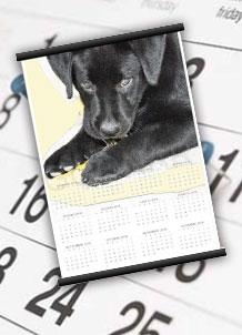 Foto Calendario Annuale A4